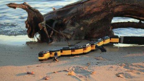 Robotic salamander, copyright Kostas Karakasiliotis, Biorobotics Laboratory, EPFL