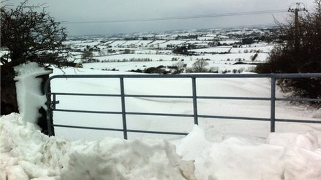 Snowy fields beyond a gate