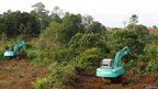 Diggers clear Bornean forest