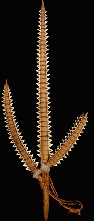 Weapon constructed from shark teeth (Image: PLoS One)