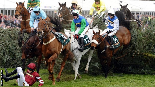 Aintree fences