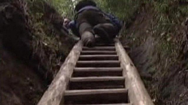 Child climbing ladder