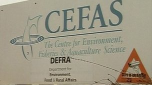Cefas sign