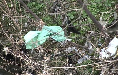 The banks of the river Dodder in Dublin are littered with plastic bags