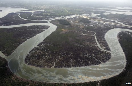 A view of the Niger Delta (file image)