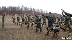 North Korean soldiers with dogs take part in a drill (7 April 2013)
