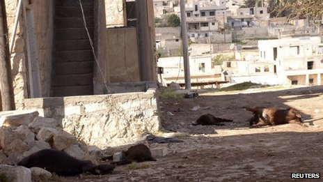 Animal carcasses lie on the ground, killed by what residents said was a chemical weapon attack on Tuesday, in Khan al-Assal area