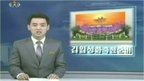 A North Korean newsreader delivering the news on TV
