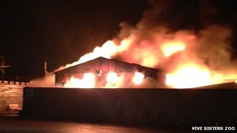 The blaze destroyed the reptile house at the zoo