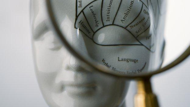 model of head