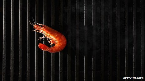 Prawn on a barbecue