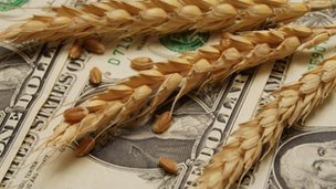 Wheat and dollars