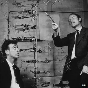 James Watson (left) and Francis Crick