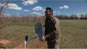 scientist using a radar device in an orchard