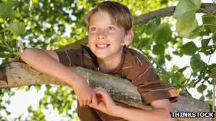 Boy in a tree