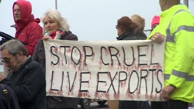 Protesters at Dover