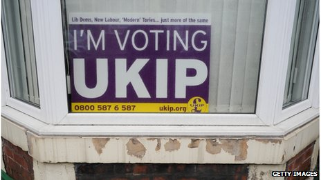 'I'm voting UKIP' sign