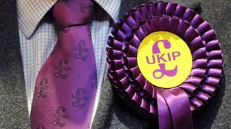 A UKIP candidate's tie and rosette