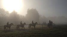 As dawn breaks on the renowned Limekilns gallops, horses are readied for training runs ahead of races including the 2000 Guineas for colts on Saturday and Sunday's 200th running of the fillies' Classic, the 1000 Guineas