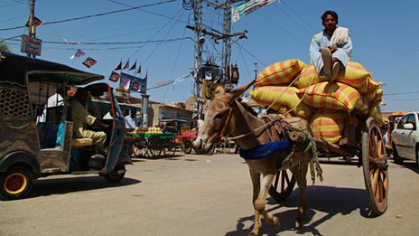 A donkey causes a traffic jam in a remote part of Sindh