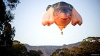 The Skywhale hot air balloon