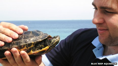 Blue Reef curator Paul Strachan with rescued terrapin. Pic: Blue Reef Aquarium