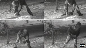 Pictures showing an alleged British spy picking a stone with a transmitter in Moscow. Photo: January 2006