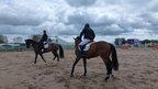 Horses practice