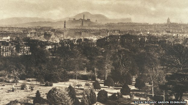 Looking out over the city from Inverleith gardens in Edinburgh