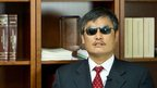 Chinese activist Chen Guangcheng