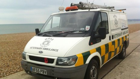 Animal-rescue vehicle at Seaford beach
