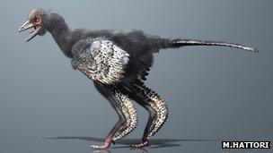 一 亿六千万年前鸡的祖先 - 雪山 - .