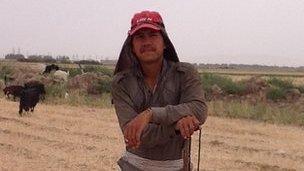Shepherd in field