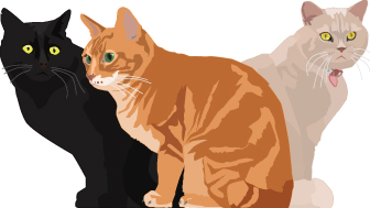 Illustrated cats