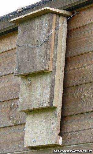 A Kent style bat box