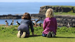 Children watching puffins