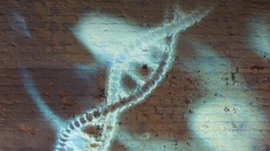 DNA projected on wall