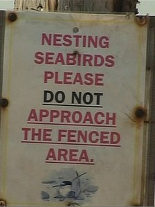 Nesting seabirds notice at Crimdon