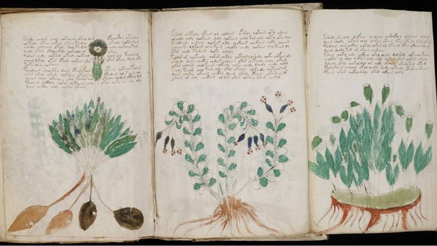 The 15th Century Voynich Manuscript has been described as the world's most mysterious book written in a complex code, an unknown language or simply a hoax