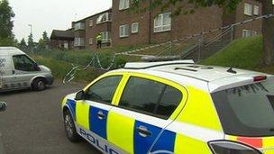 Police car at Newbury crime scene