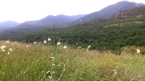 Dagestan fields