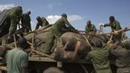 Kenya Wildlife Service wardens securing a sedated elephant, Kenya - Wednesday 19 June 2013