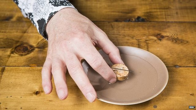 Mark places cork and needle in a dish of water