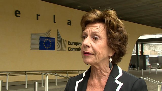 Vice-president of the European Commission, Neelie Kroes