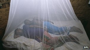 Couple sleeping under a mosquito net in Kenya