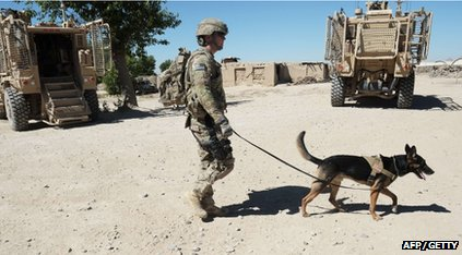 A soldier walking a sniffer dog in Afghanistan