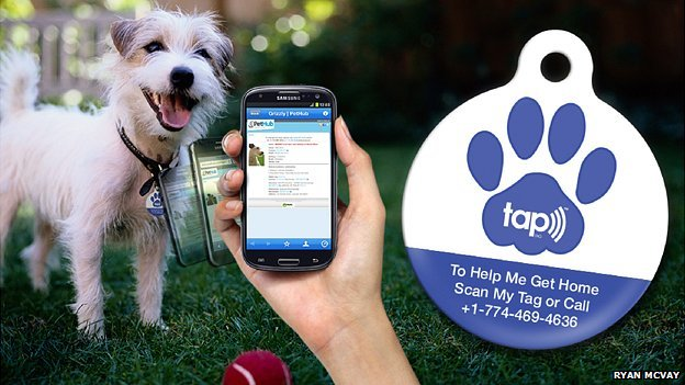 Pethub collar tag and app