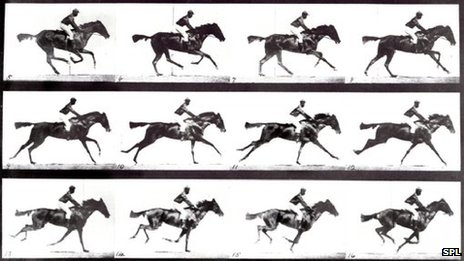Galloping horse sequence produced by British photographer Eadweard James Muybridge (c) Science Photo Library