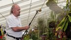 Bill Bailey waters the plant that has been named after him at the RHS Hampton Court Palace Flower Show