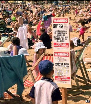 File photo from 1999 of a jellyfish warning sign on a beach (Image: PA)
